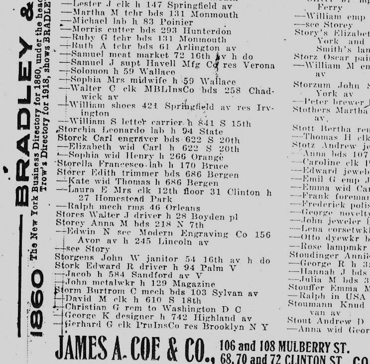 The Newark directory shows both the home and business addresses for Edwin N. Storey.