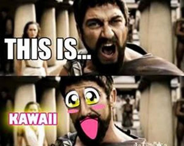 37) 22-11-13 This is Kawai