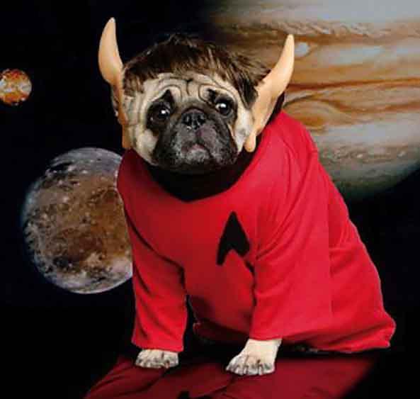 10-Perro-Spock-StarTrek-10
