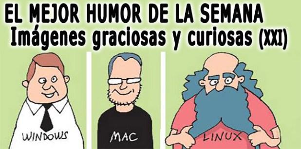 Imagenes-graciosas-y-curiosas-XX-PORTADA