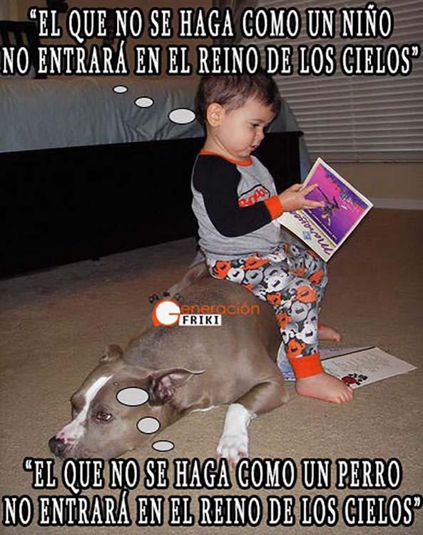 856) 18-02-15 bebe-perro-Reino-Cielos-Humor