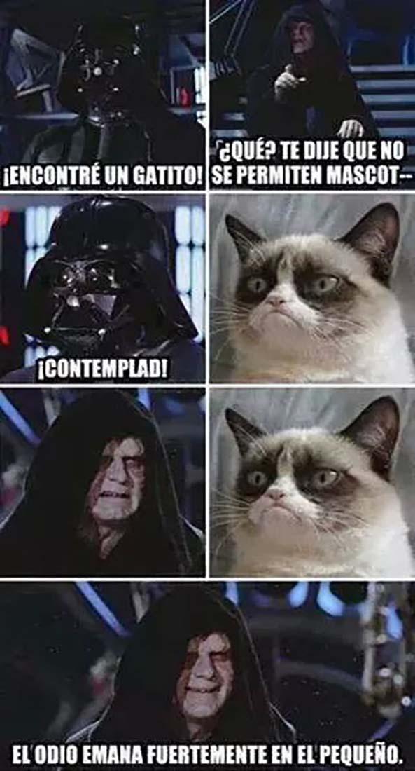 11-Imagenes-graciosas-y-divertidas-XXXIII-Star-Wars