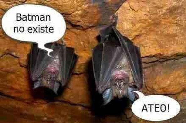 904) 21-03-15 Batman-no-existe-Humor