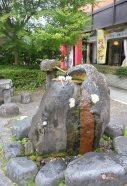 generacion-friki-en-japon-nikko-pueblo-11