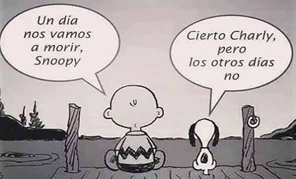 1396) 07-11-16 Snoopy-carpe-diem-Humor