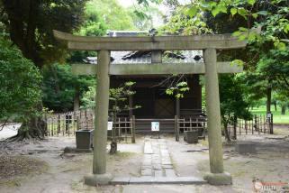 itinerario-japon-para-frikis-otakus-15-días-parte-1-generacion-friki-shiba-1