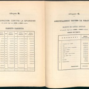 Hail summary schedules 1836-1883 (Venice, 1884)