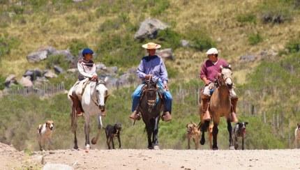 La route de Gauchos près de la frontière en Argentine