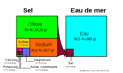 magnesium marin enfant
