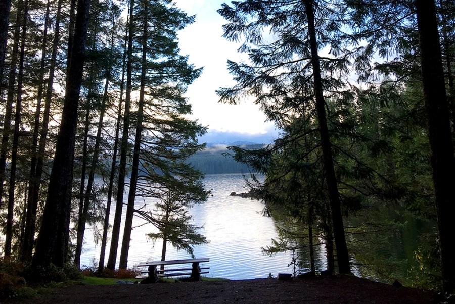Generic-Van-Life-Camping-Spot-Burnt-Beach-British-Columbia-Picnic-Table