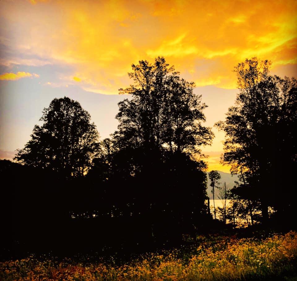 Watauga Lake. 9 July 17. Johnson City, Tennessee. Copyright, Alarice Multimedia, LLC.