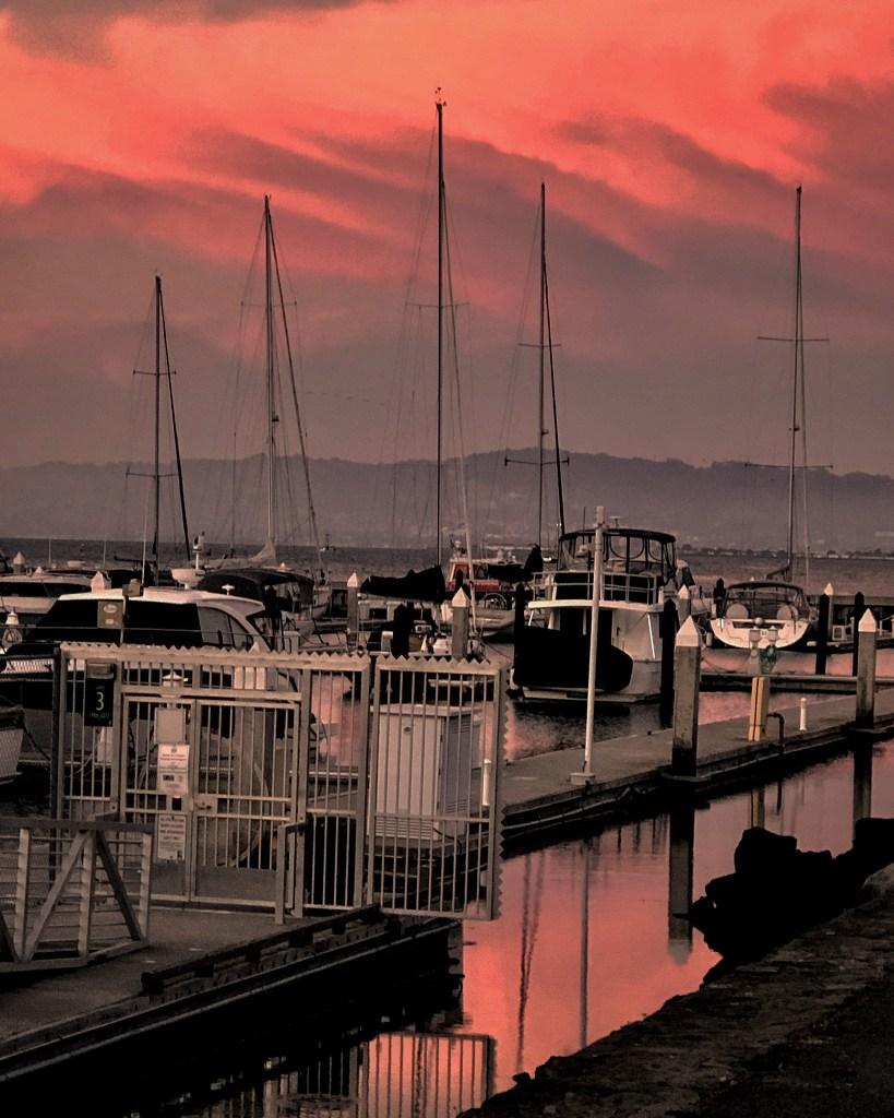 San Francisco. 23 July 19. Copyright, Alarice Multimedia, LLC.