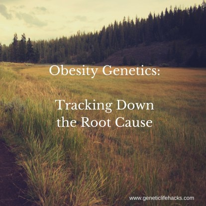 Obesity Genetics-Tracking Down the Root Cause