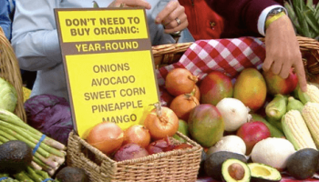 romeo juliet character essay topics resume format editing medical organic food essay conclusion organic food essay