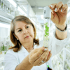 "Addressing GMO concerns: Are foods ""made in labs"" the same as those ""made by nature"""