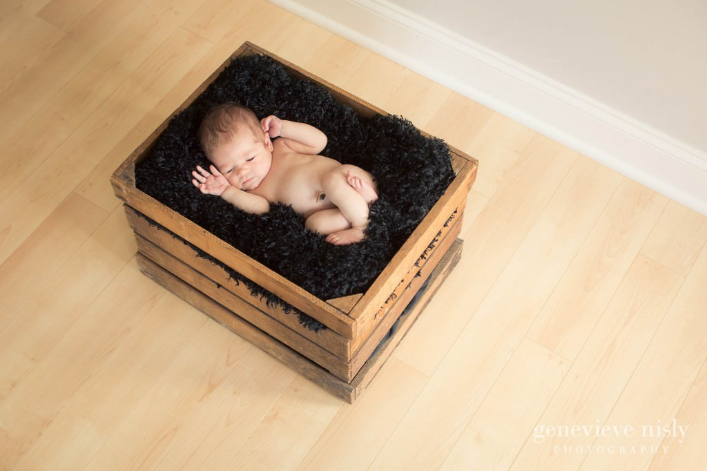 Copyright Genevieve Nisly Photography, Family, Newborn, Portraits, Studio