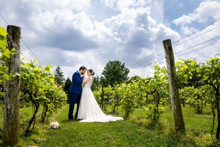Wedding, Ohio, Canton, Gervasi Vineyard