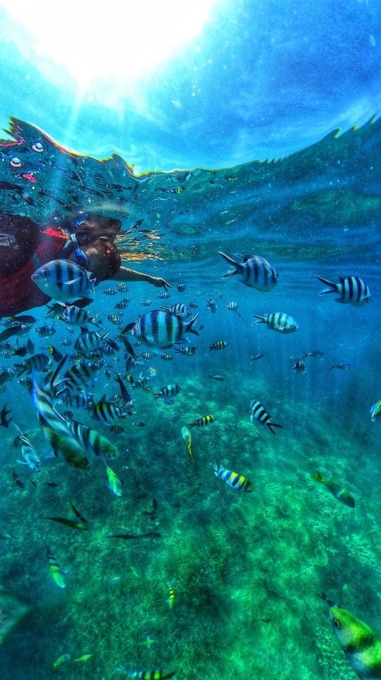 Pertama Kali Nak Ke Pulau Tioman? Ini Itinerari Dan Kos Untuk Rujukan Anda 3