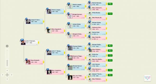 HTML Tree: New Pedigree View