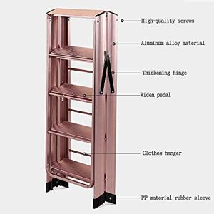 QingShunBeiJing Porte-Manteau Multifonction en Alliage d'aluminium pour échelle, échelle Pliante pour intérieur et extérieur, Double étagère à Chevrons
