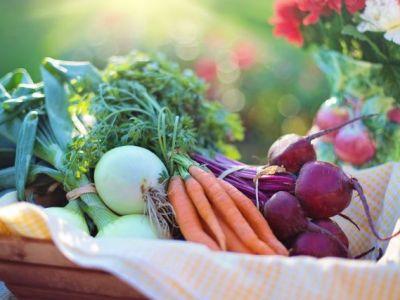 Genitorialmente | Menù settimanale dietetico pre-feste