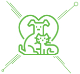 icon_pet-insurance