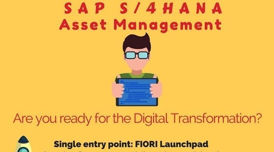 S4HANA Asset Management Infographic