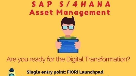 S4HANA Asset Management Infographic