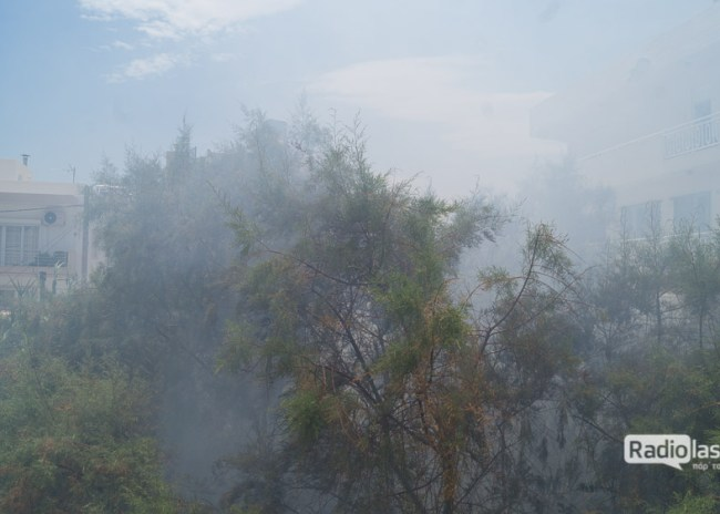 Λασίθι: Καλάμια προκάλεσαν πυρκαγιά στην Ιεράπετρα