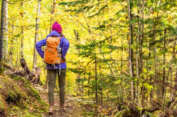 The Best Backpacking Gear You Need to Enjoy the Outdoors