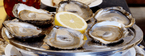 Wiltons Oysters