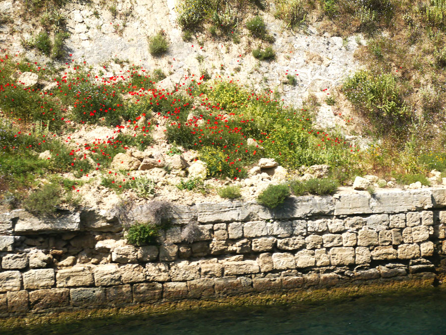 Athens-To-Kefalonia-Day-3-Image-12