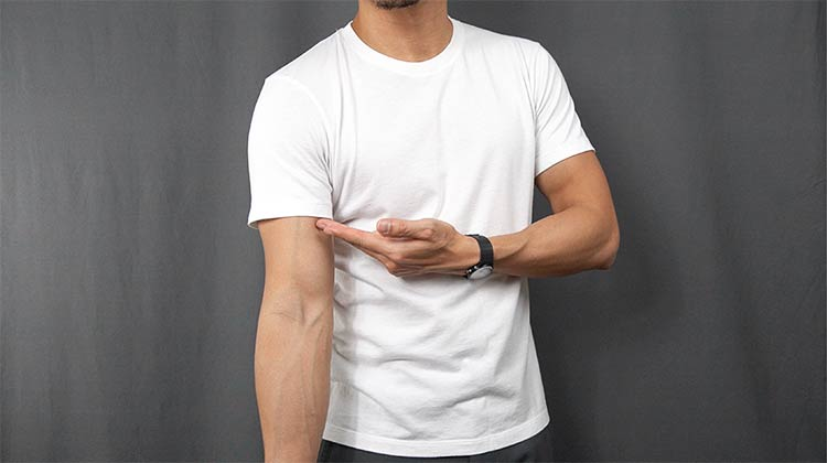 Uniqlo Supima Cotton T-Shirt Sleeve Length