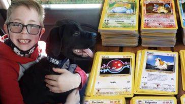 Un garçon de 8 ans vend ses cartes Pokémon pour sauver son chien