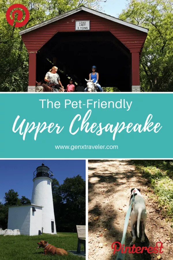Top pet-friendly things to do on the Upper Chesapeake Bay