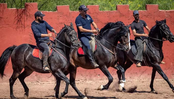 352038 3010855 updates Horse-whisperer hopes Morocco films return at full gallop