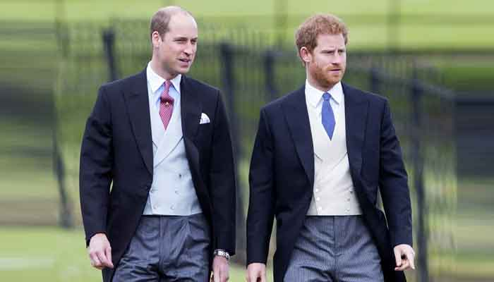 Prince Harry and Prince Williams touching words to their mom Princess Diana revealed