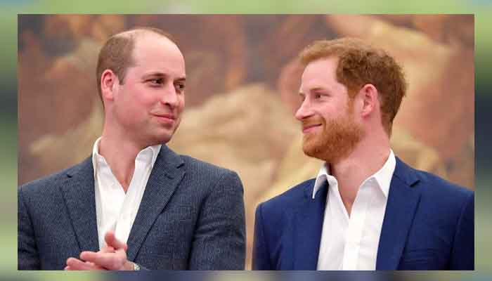Prince William and Harry will surprise world to renew the pledge they made to Princess Diana?