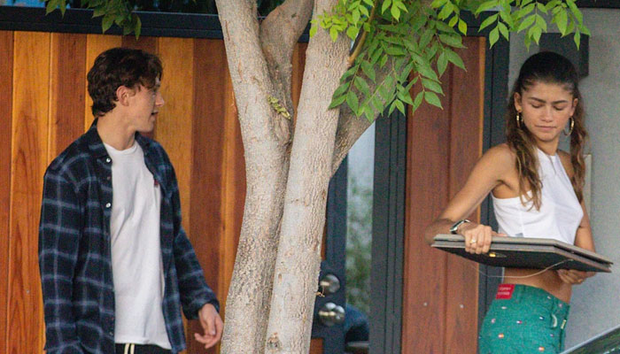 Zendaya and Tom Holland confirm relationship with PDA-filled outing