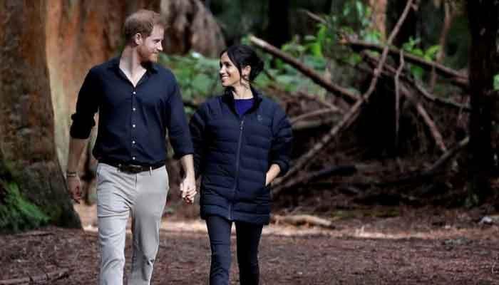 Royal biographer explains why Harrys relations with royal family cant improve