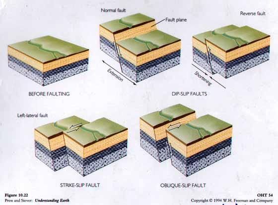 http://www.geo.wvu.edu/~jtoro/Petroleum/petroleum_figs/review2/traps/faults.jpg