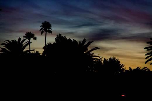 desert-at-dusk.jpg