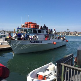 nautilus whale watching boat