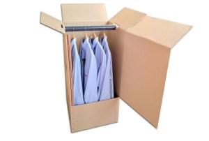 caja mudanza económica
