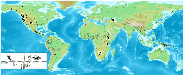 Dark circles represent languages with ejectives, clear circles represent those without ejectives. Clusters of languages with ejectives are highlighted with white rectangles. For illustrative purposes only. Inset: Lat-long plot of polygons exceeding 1500 m in elevation. The six major inhabitable areas of high elevation are highlighted via ellipses: (1) North American cordillera (2) Andes (3) Southern African plateau (4) East African rift (5) Caucasus and Javakheti plateau (6) Tibetan plateau and adjacent regions. Map from: Evidence for Direct Geographic Influences on Linguistic Sounds: The Case of Ejectives by Caleb Everett.