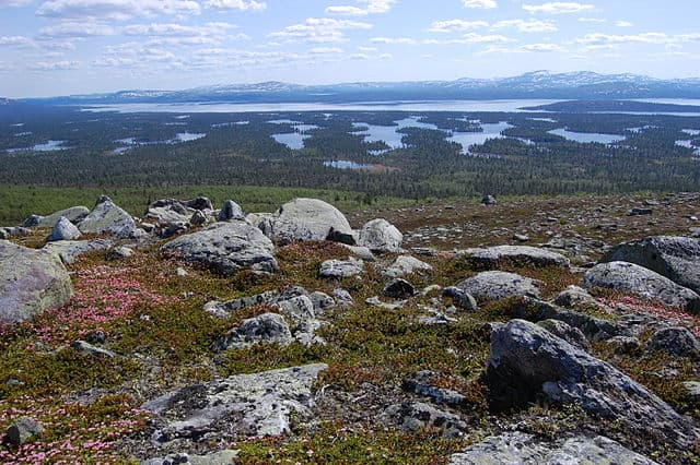 The forested ridges in Lake Rogen, Sweden are Rogen moraines.  Photo: Wenkbrauwalbatros.