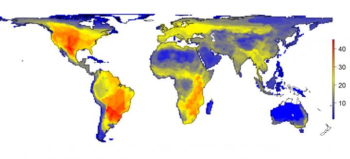 The natural diversity of large mammals is shown as it would appear without the impact of modern man (Homo sapiens). The figure shows the variation in the number of large mammals (45 kg or larger) that would have occurred per 100 x 100 kilometer grid cell. The numbers on the scale indicate the number of species. Credit: Soren Faurby