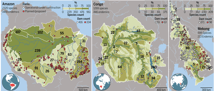 Fish diversity and dam locations in the Amazon, Congo, and Mekong basins. From Winemiller et al, 2016.