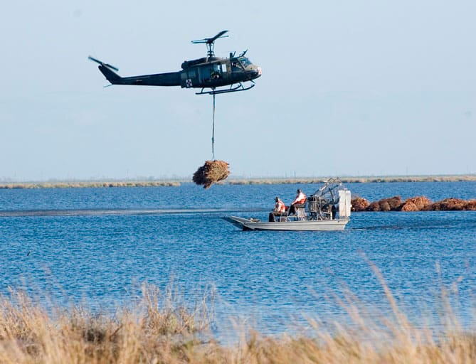 The Louisiana Army National Guard places Christmas trees in strategic locations to help restore marshland in Bayou Sauvage. Photo: USFWS