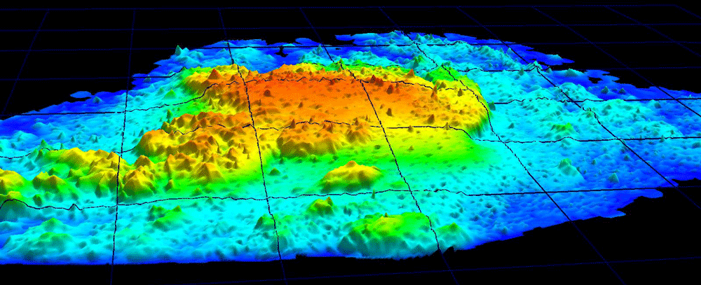 Topographical map of Johnson's Reef from NASA's Experimental Advanced Airborne Research Lidar (EAARL) in June 2003. Source: NASA/USGS, public domain